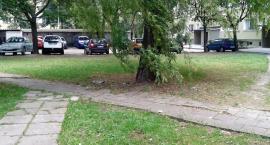 Rakowiec - Remont podwórek przy ul. Skorochód Majewskiego (nr 1233)