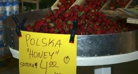 Polska Honey