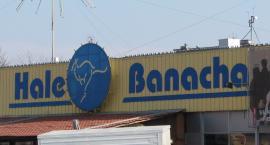 35-lecie Hal Banacha