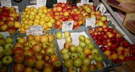 Kolory Zieleniaka – kolor jabłkowy