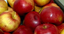 Tanieje papryka a drożeją pomidory. Jabłaka BZ