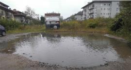 Jezioro Łabędzie na Drawskiej