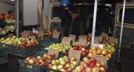 Owoce z własnego sadu koło Grójca